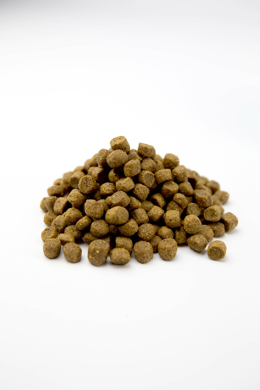 ASPIRE Chicken & Rice Formula - Canine Health Forward